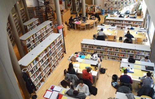 biblioteca municipal web